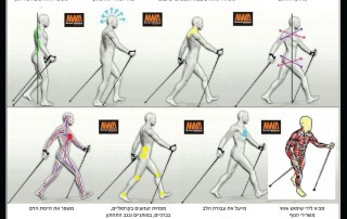 יתרונות הליכה נורדית